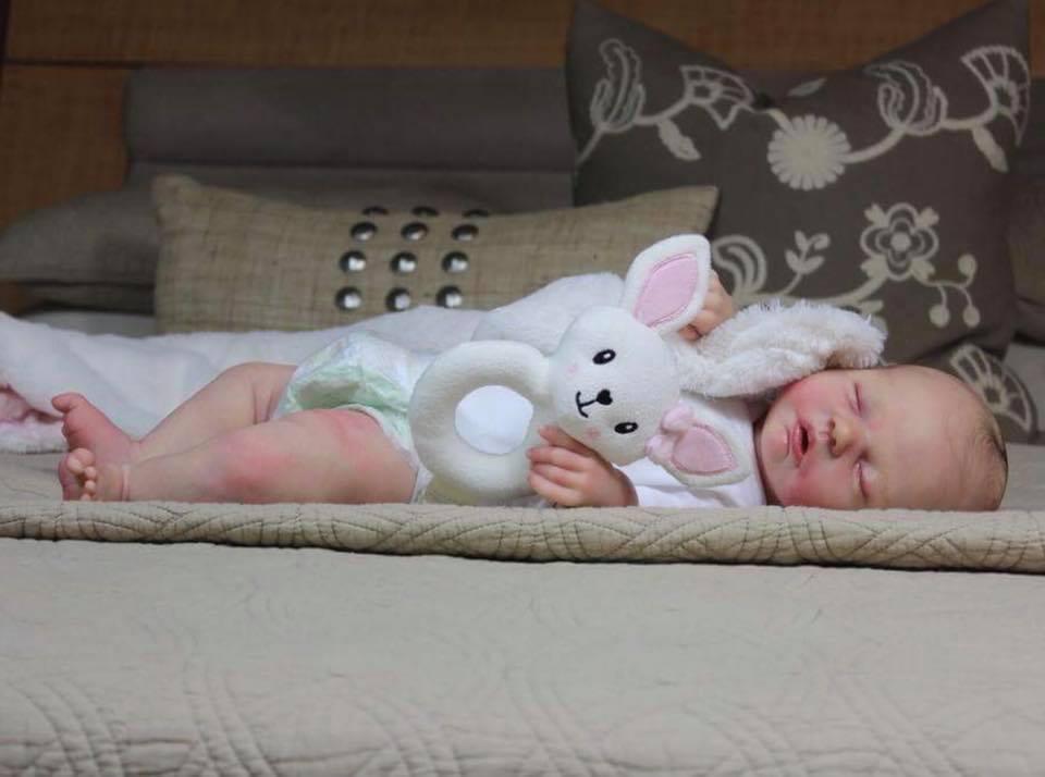 Robin Asleep By Nikki Johnston Sculpt Our Life With Reborns