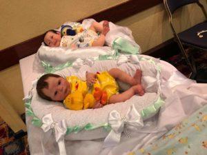 Elies enchanted cradle