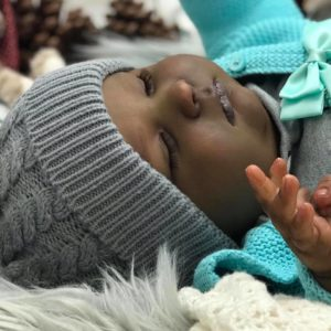 february basildon doll show 2019